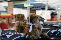 La Marmotte Granfondo 2018